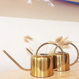 Gold Watering Can 900ML